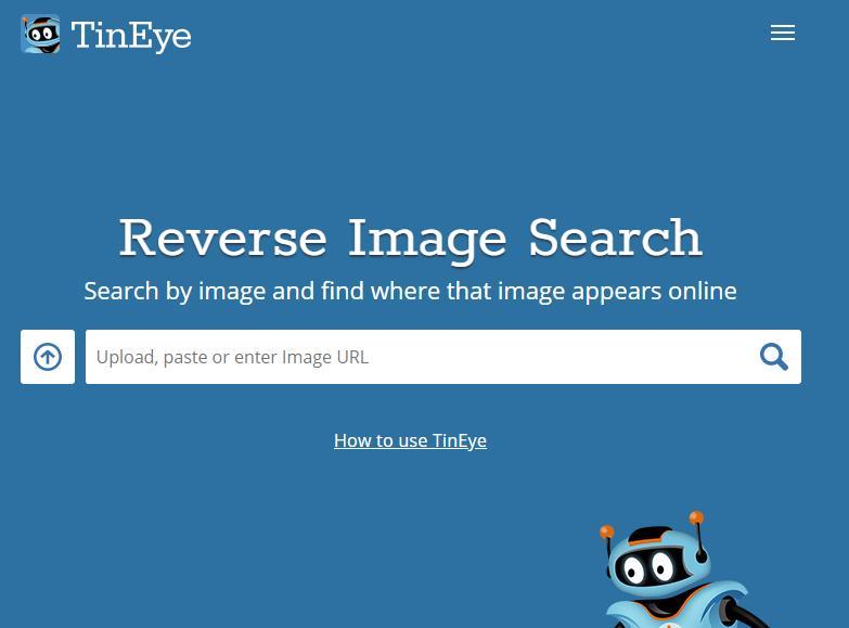 Как искать по картинке в TinEye